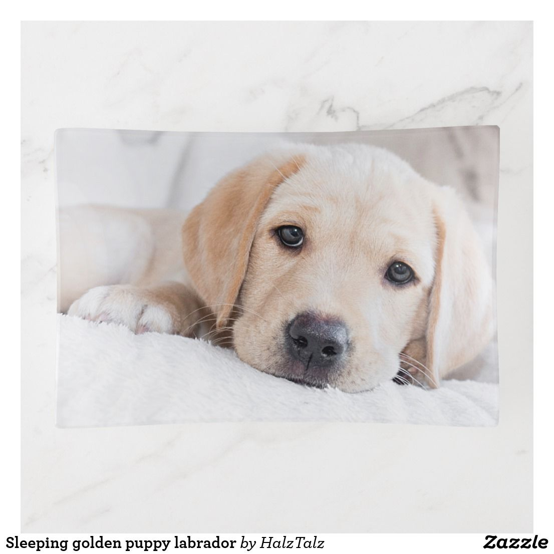 Sleeping Golden Puppy Labrador Trinket Trays Zazzle Co Uk