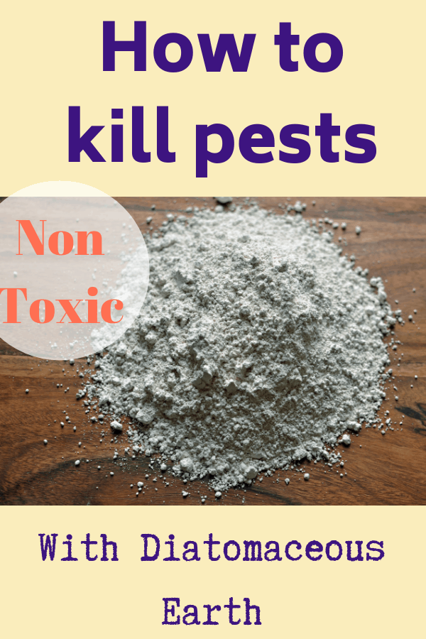 How to Use Diatomaceous Earth All You Need to Know