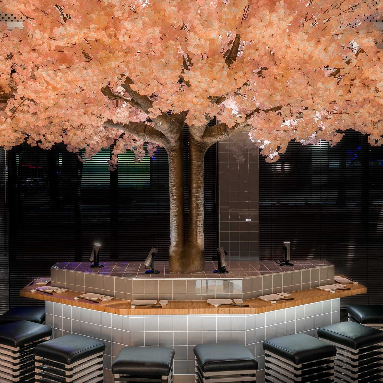 This Modern Japanese Restaurant Has A Cherry Blossom Tree That Stands 16 Feet 5m In Width And 11 Feet 3 5m High Ma Decoracao De Bar Restaurantes Decoracao