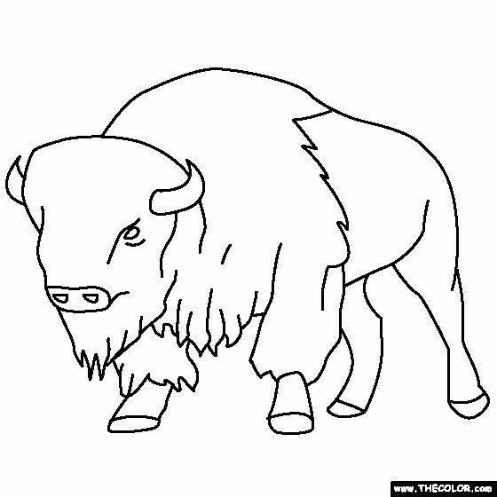 Pin de Susan Carrell en Buffalo and Bison sketches   Pinterest