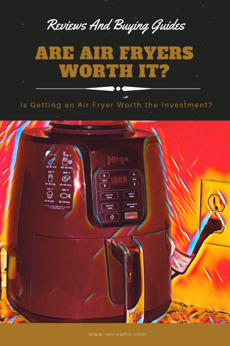 Are Air Fryers Worth It? Should you invest in one? we put