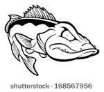 Walleye Clip Art Logo Toledo Walleye Clip Art Download 48 Clip Arts Page 1 Clipartlogo Toledo Walleye Walleye Clip Art