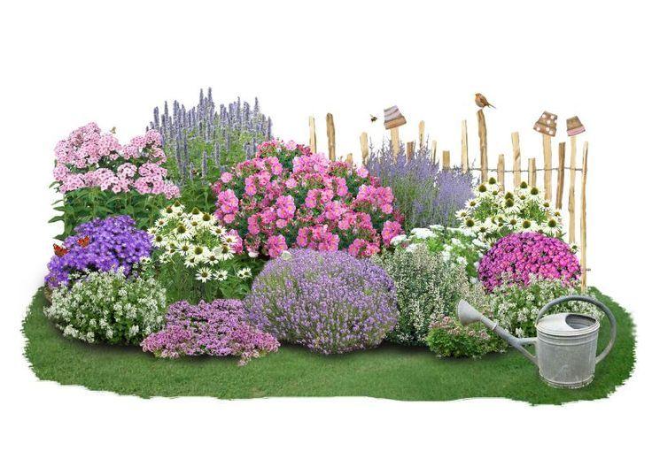Auf nur 2,5 m² lässt sich dieses exklusive Beet anpflanzen, das für hungrige Insekten von Frühjahr bis Herbst einen reich gedeckten Tisch bereithält. Neben der neuen Rosenzüchtung Bienenweide®-Rose renommierten Rosenschule Tantau, die...