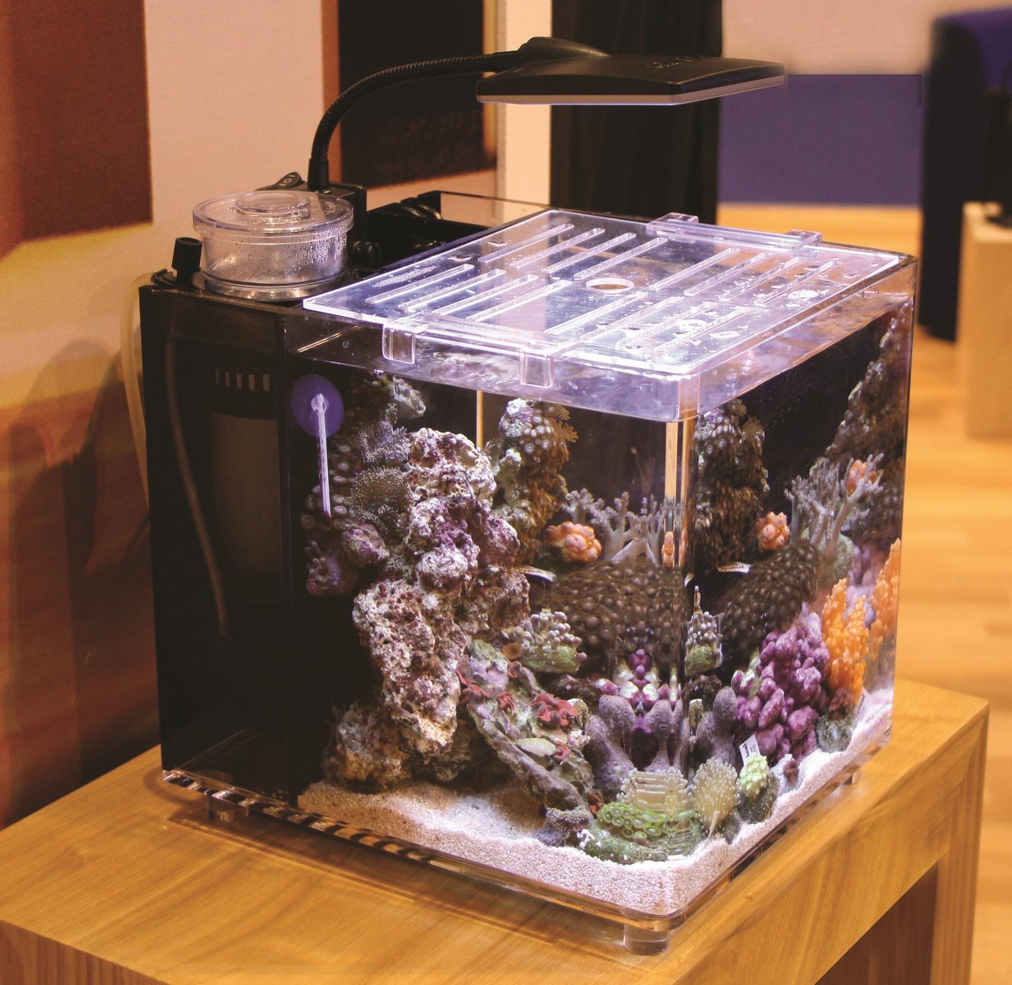 TMC MicroHabitat 15 Is A Nano Aquarium Which Will Be Ready