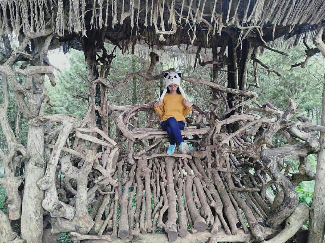 Goa Pinus Batu Yang Sanggup Menghipnotis Di Malang Jawa