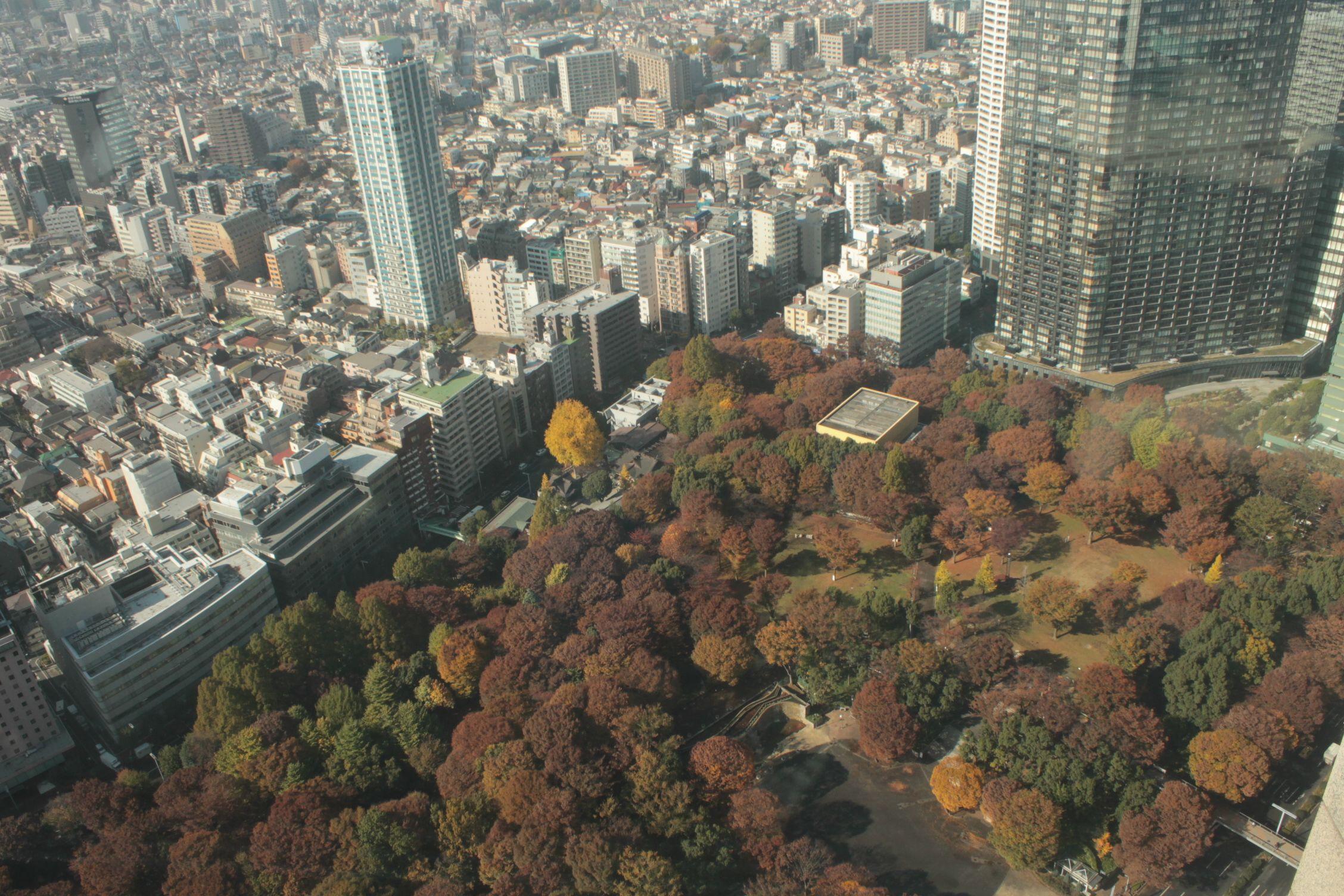 Vistas desde la torre del gobierno