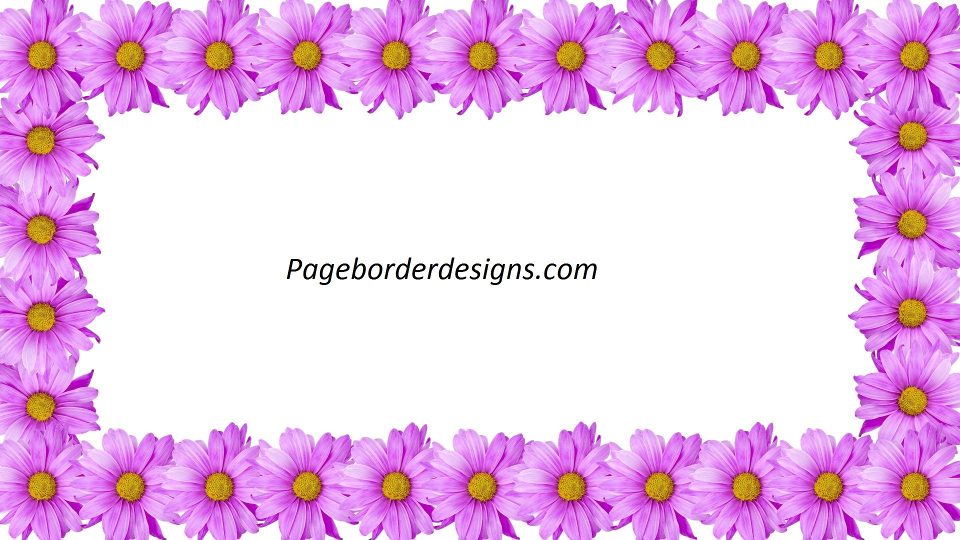 Beautiful Purple Flower Frames Border Design 2016 border design