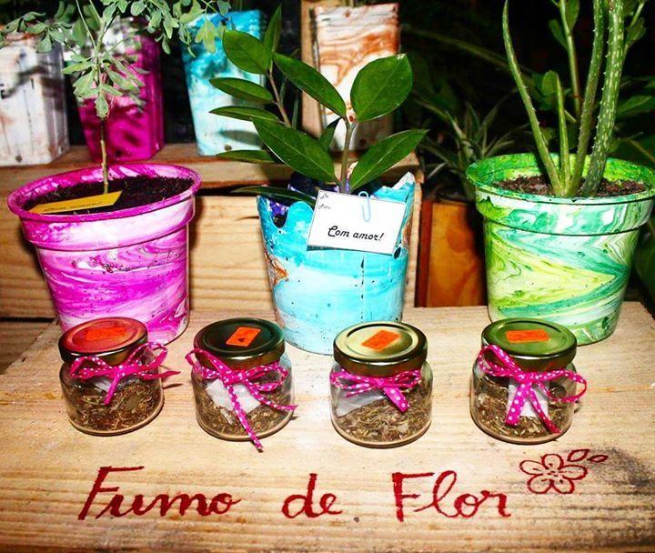 Kumbayá - Fumo de flores e ervas  Potinhos com 12g - R$10. Cigarros enrolados: R$2 unidade./ 3 por R$5/ 5 por R$8. Entregas Segunda quarta e sexta. Agendem sua entrega!!! Vasos de plantas da foto também estão a venda se interessou? Falar com Breno @vilavagalume #gratidão #flores #fumo #kumbayacoveg #Kumbayá #paredefumar #empreendedorismomaterno #compredopequeno #compredasmaes #compredequemfaz #encomendas #manaus #consumoconsciente #sustentabilidade by callmariaveg http://ift.tt/1UrjiKi