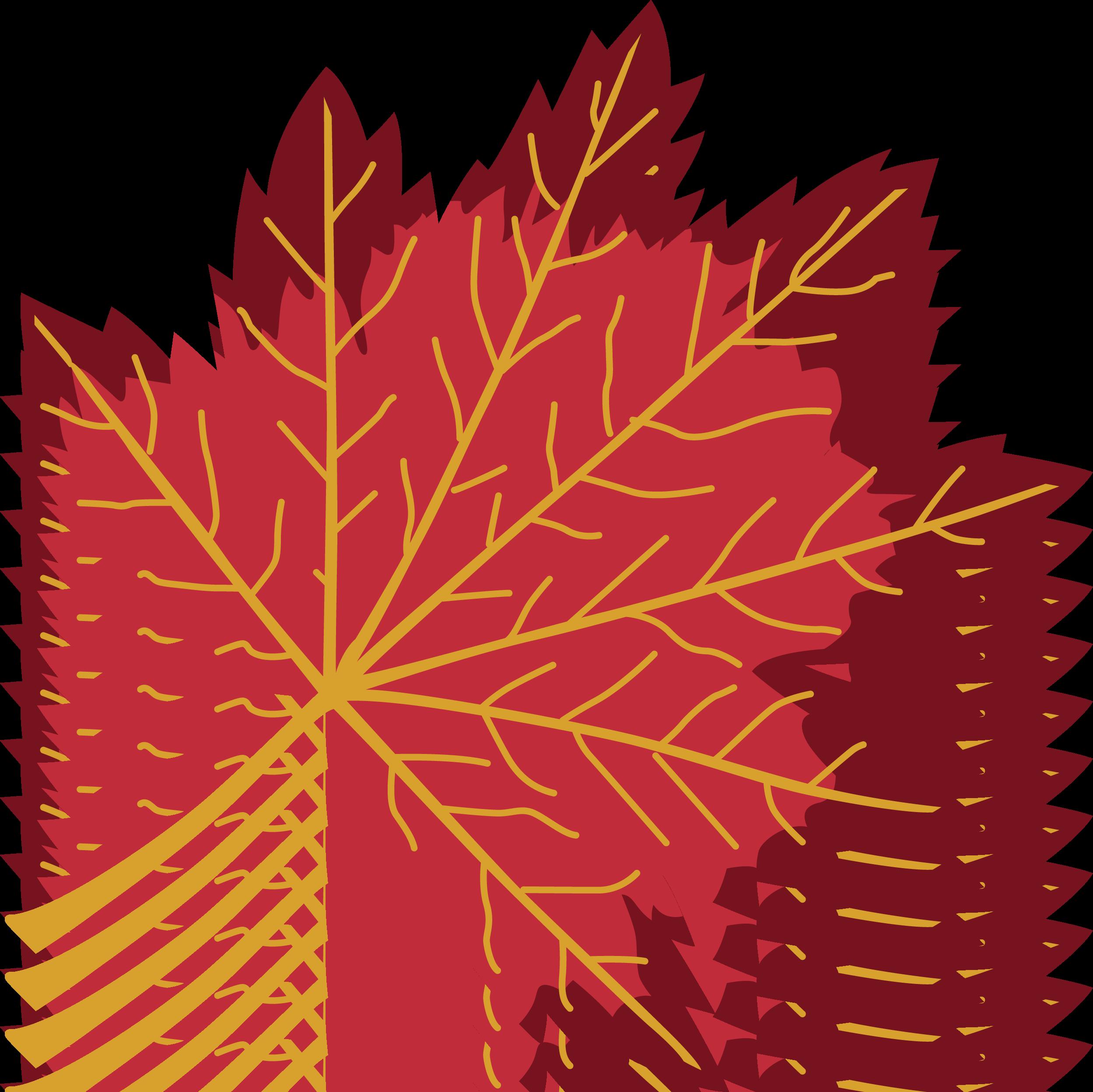 Fall Leaf Svg File Svg Designs Svgdesigns Com Autumn Leaves Svg Design Design