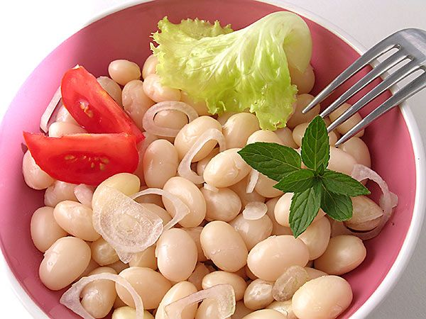 Une salade de coco de Paimpol AOC