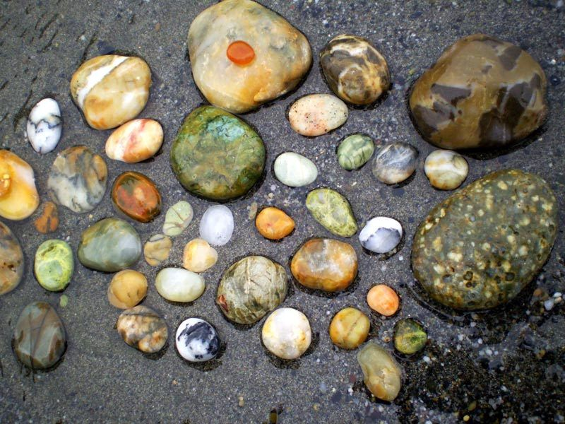 Agates Jade And Various Unique Rocks Found On Agate Beach At Patricks Point State Park