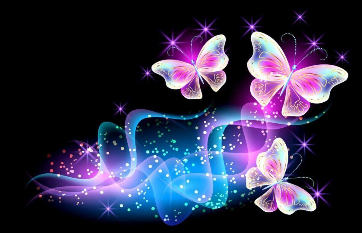 خلفيات عالية الوضوح ل فراشات Butterflies فراشة حيوانات 23 Butterfly Wallpaper Butterfly Wallpaper Iphone Butterfly Background
