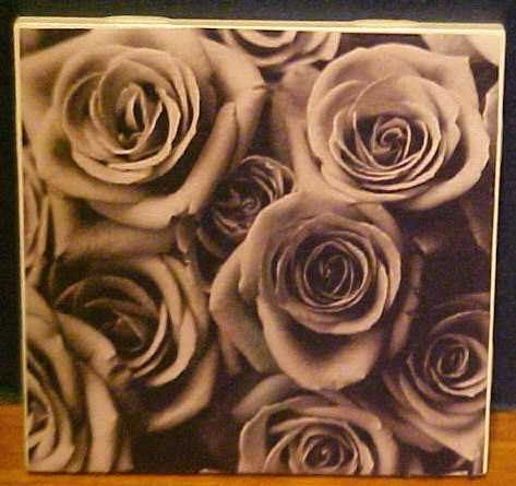 Black and White Roses image on Ceramic 4.25 x 4.25 by TwoPuppys, $3.00