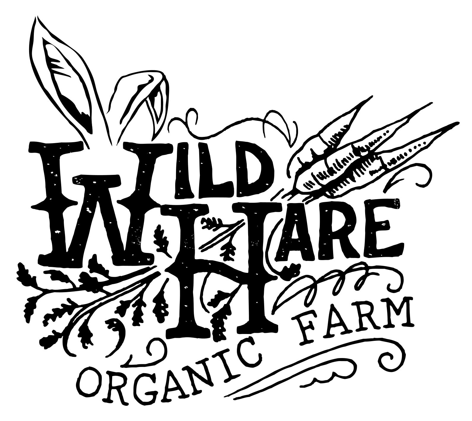 10/16/15 - It was a perfect day to visit the Organic Farm!