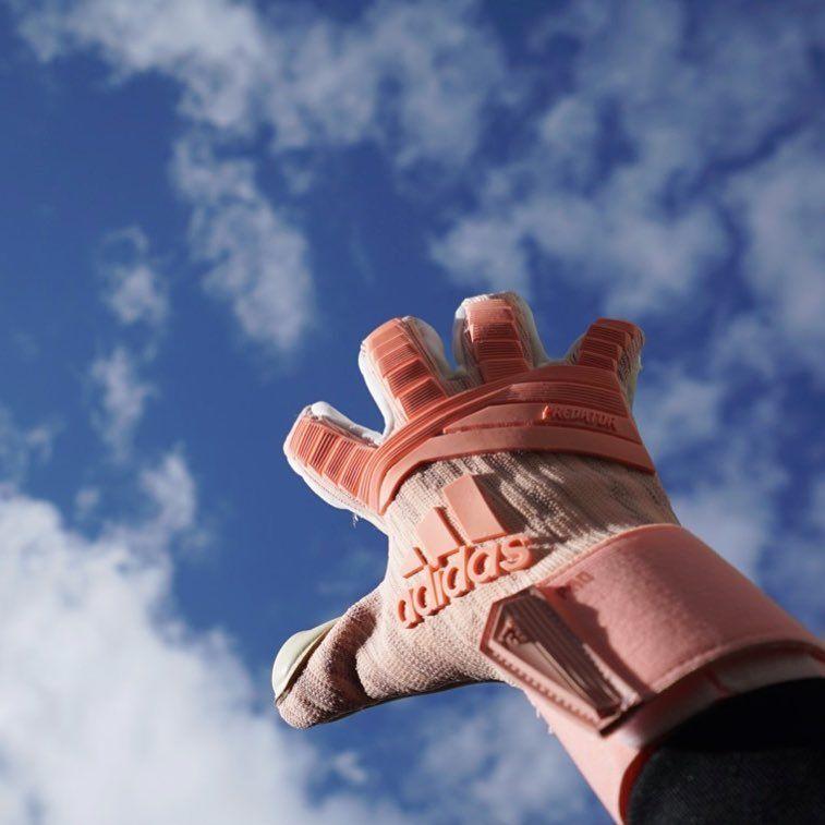 Elasticidad rosa  Predator Pro de  adidas es ⚡ - -  portero   guantesdeportero  guantesadidas  adidasfootball 25586eddcbb60