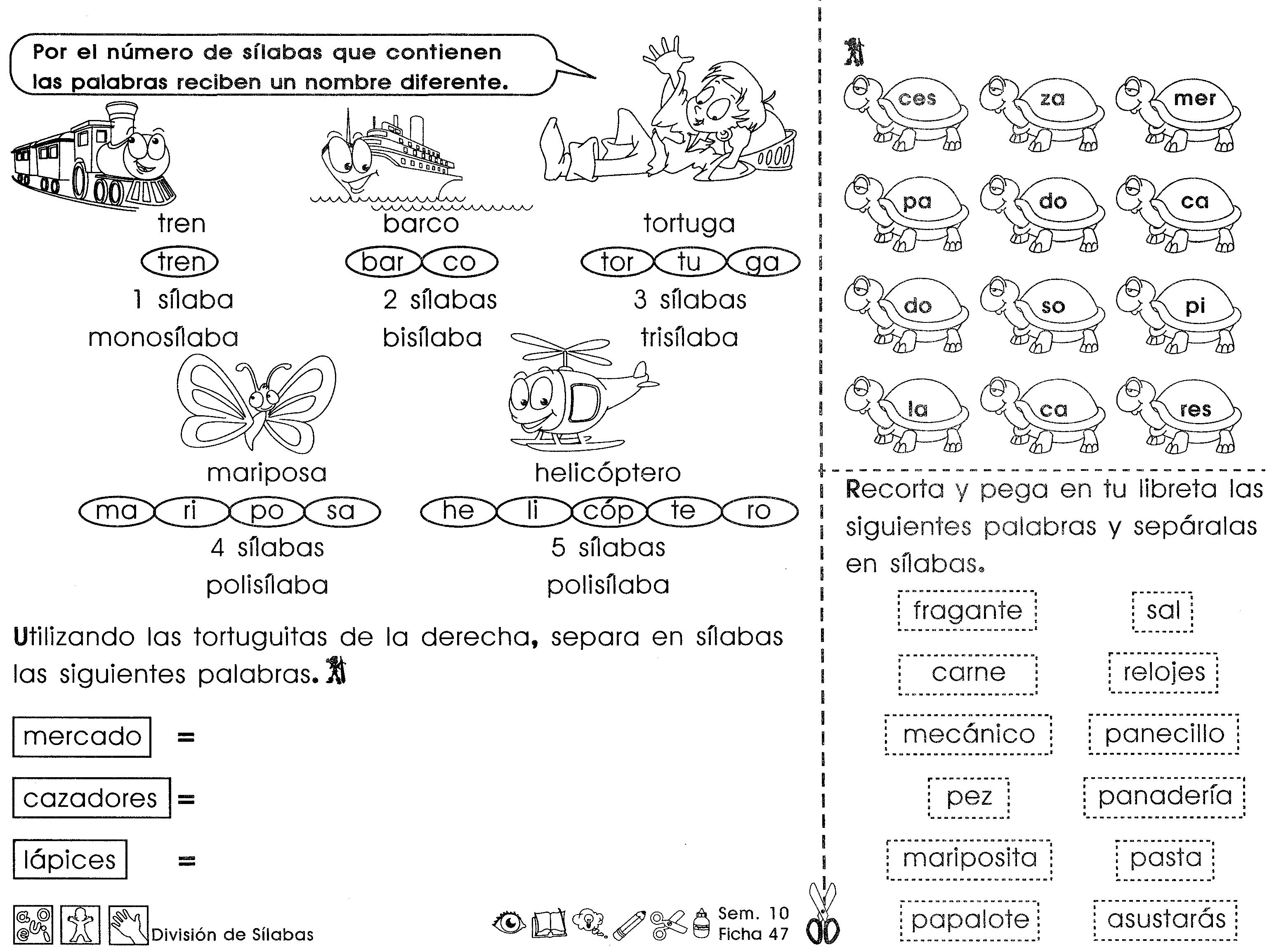 División de sílabas: 3er grado - Material de Aprendizaje   Division de  silabas, Silabas, División silabica