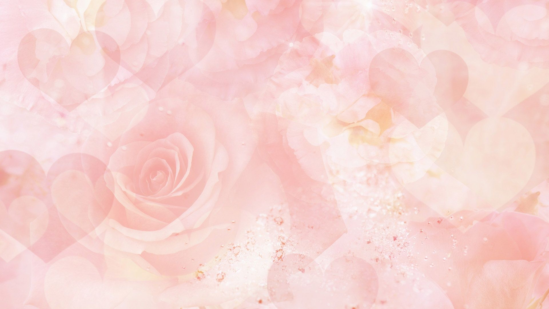 1920x1080 Background Flower 9 Hd Wallpapers 1080p Pink Flowers