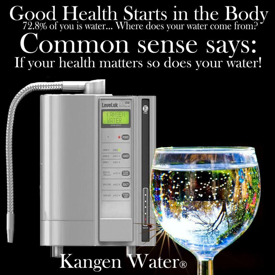 Kangen Water 174 Hydrogen Rich Electrolyzed Water It Appears