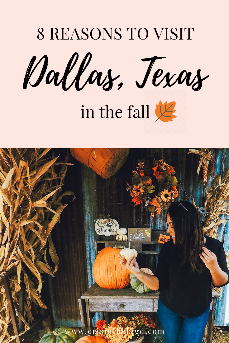 Fall in Dallas, Texas Top Things To Do Visit dallas
