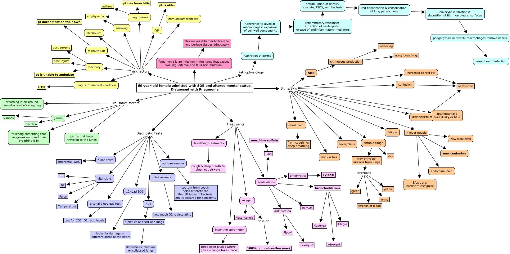 Pneumonia I Love Sleep So Much Its My Career Concept Map Nursing