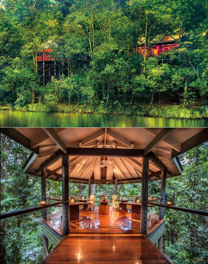 If you ever dreamed of sleeping in a treehouse, then check out these 20 most amazing treehouse retreats around the world that offer stunning scenic views and a cozy night's sleep.  #treehousehotel #treehouseresort #besttreehouses