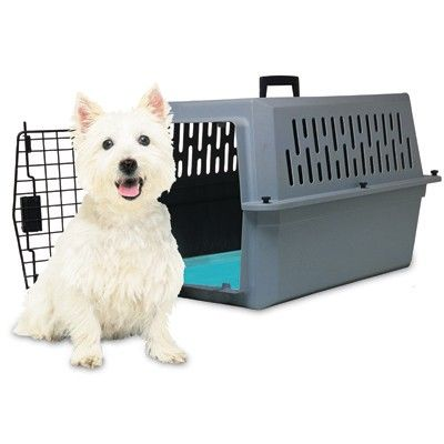 Pet Carrier Cool Dog Beds Cool Pets Pets