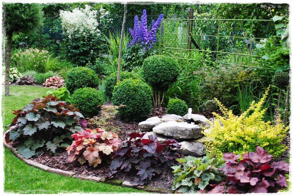 Zurawki Zogrodemnaty20 Plants Landscape Design Garden