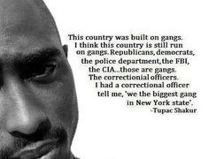 Police Brutality Quotes Fascinating Tupac Quotes On Police Brutality  Thoughts Quotes Verses Lyrics