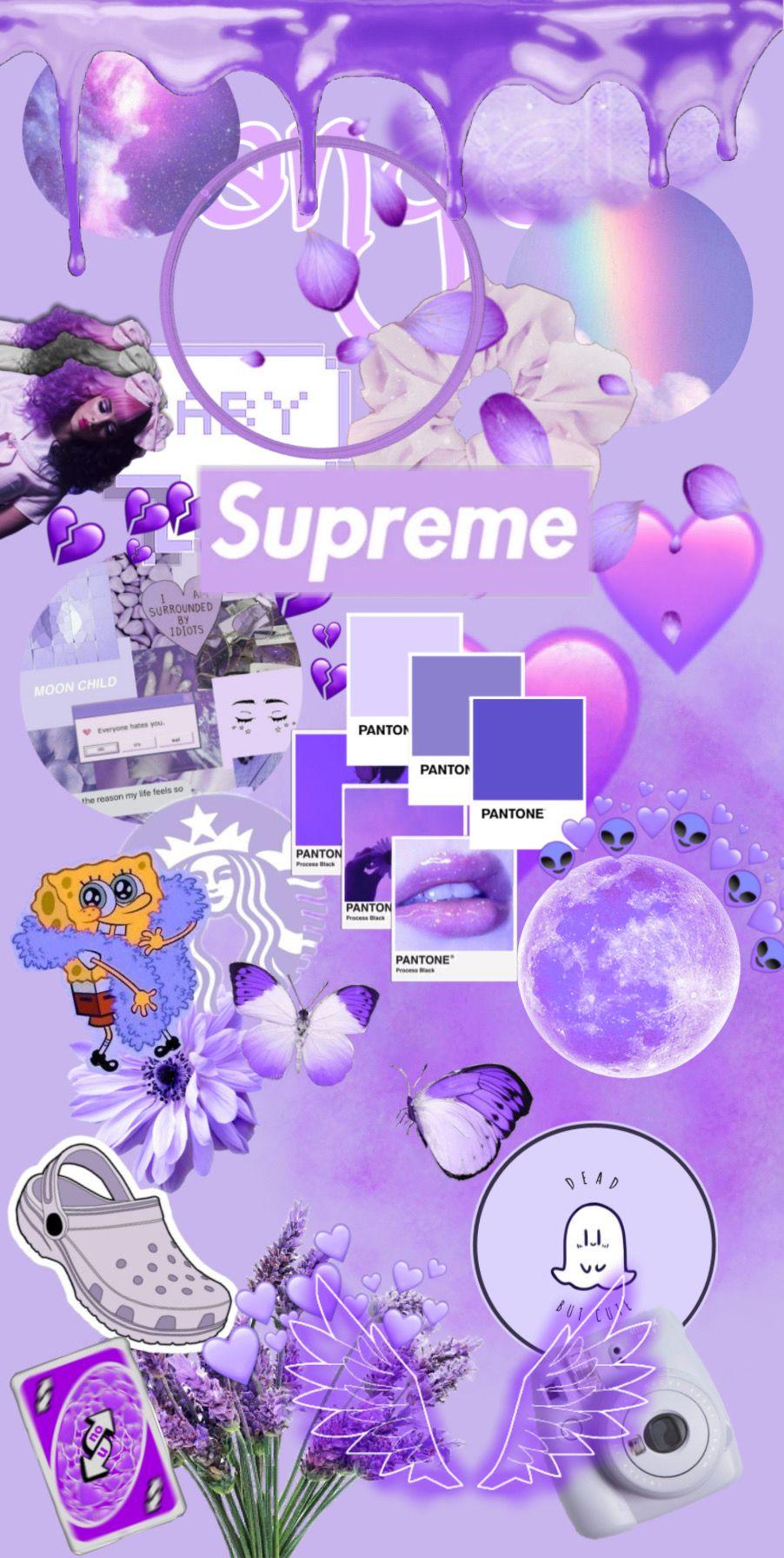 Purple Ilustrasi Bisnis Fotografi Bunga Bunga Ungu