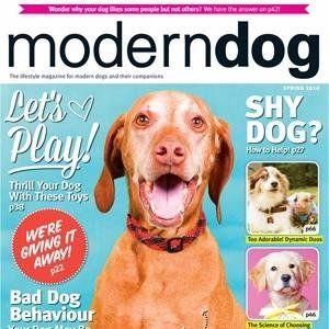 Modern Dog Magazine On Twitter Modern Dog Magazine Dog Magazine Modern Dog