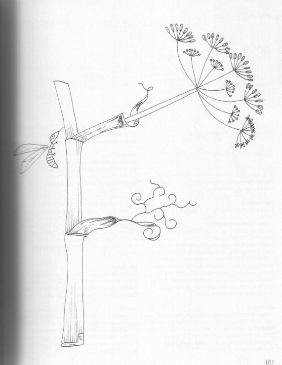 Galleryru / Foto # 15 - Abecedaire Botanique - simplehard Letras