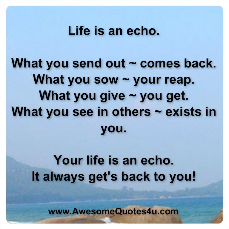 Awesome Quotes: Life Is An Echo.