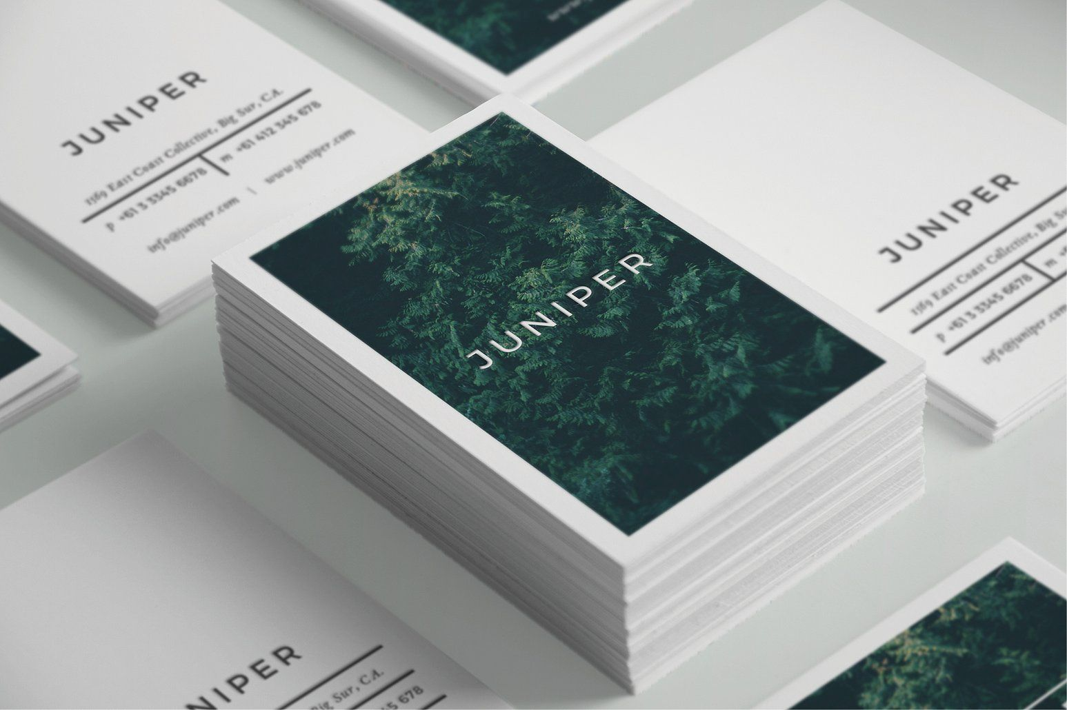 J U N I P E R Business Card Template | Card templates, Business ...
