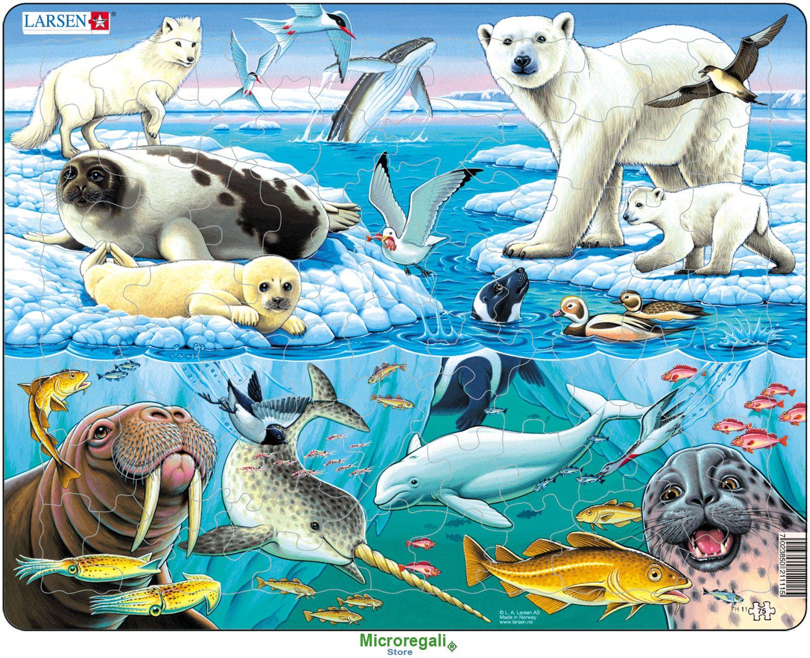 Puzzle Per Bambini Animali Del Polo Nord Cm 36x28 75 Pezzi