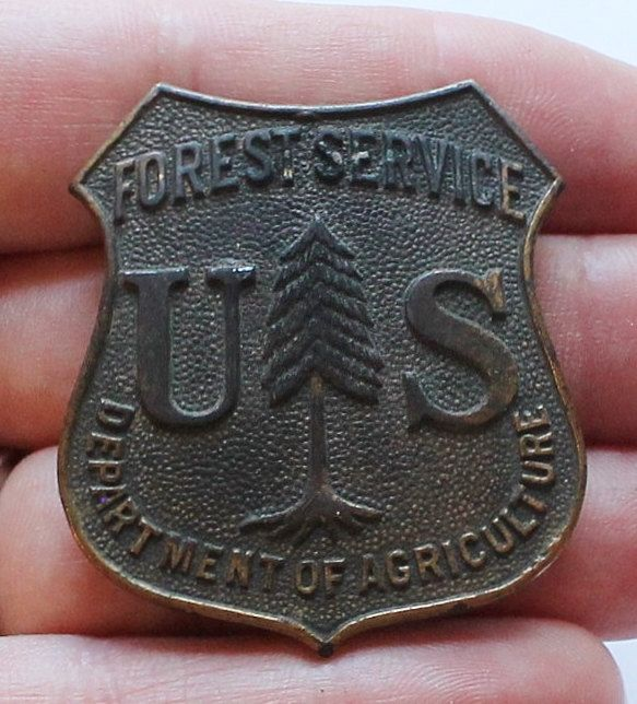 Antiques Us: Vintage US Forest Service Obsolete Style Badge Department