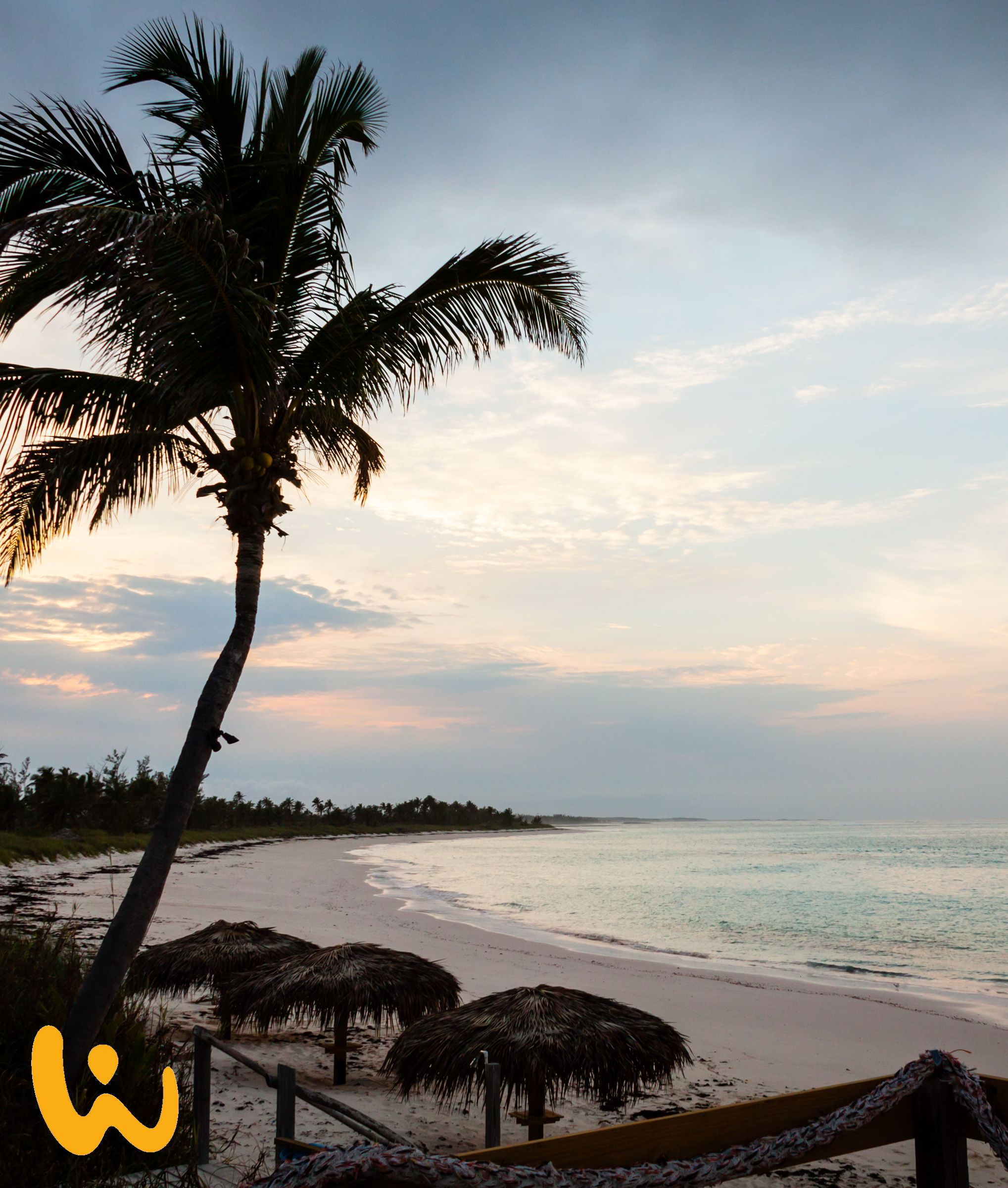 sonnenuntergang bahamas palme blaues meer sandstrand strohdach das perfekte bild was die. Black Bedroom Furniture Sets. Home Design Ideas