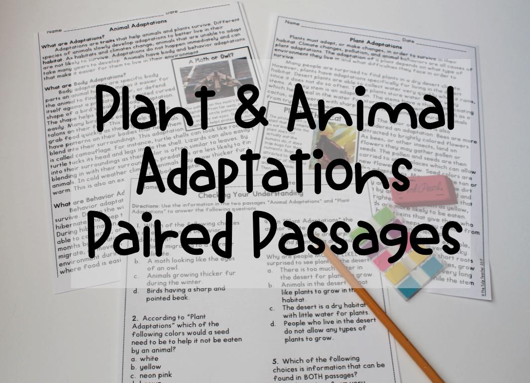 Plant And Animal Adaptations Reading Comprehension Paired Passages Animal Adaptations Paired Passages Adaptations [ 771 x 1065 Pixel ]