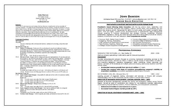 Sample Executive Summary For Resume Sales Executive Resume Example  Executive Resume Resume Examples .