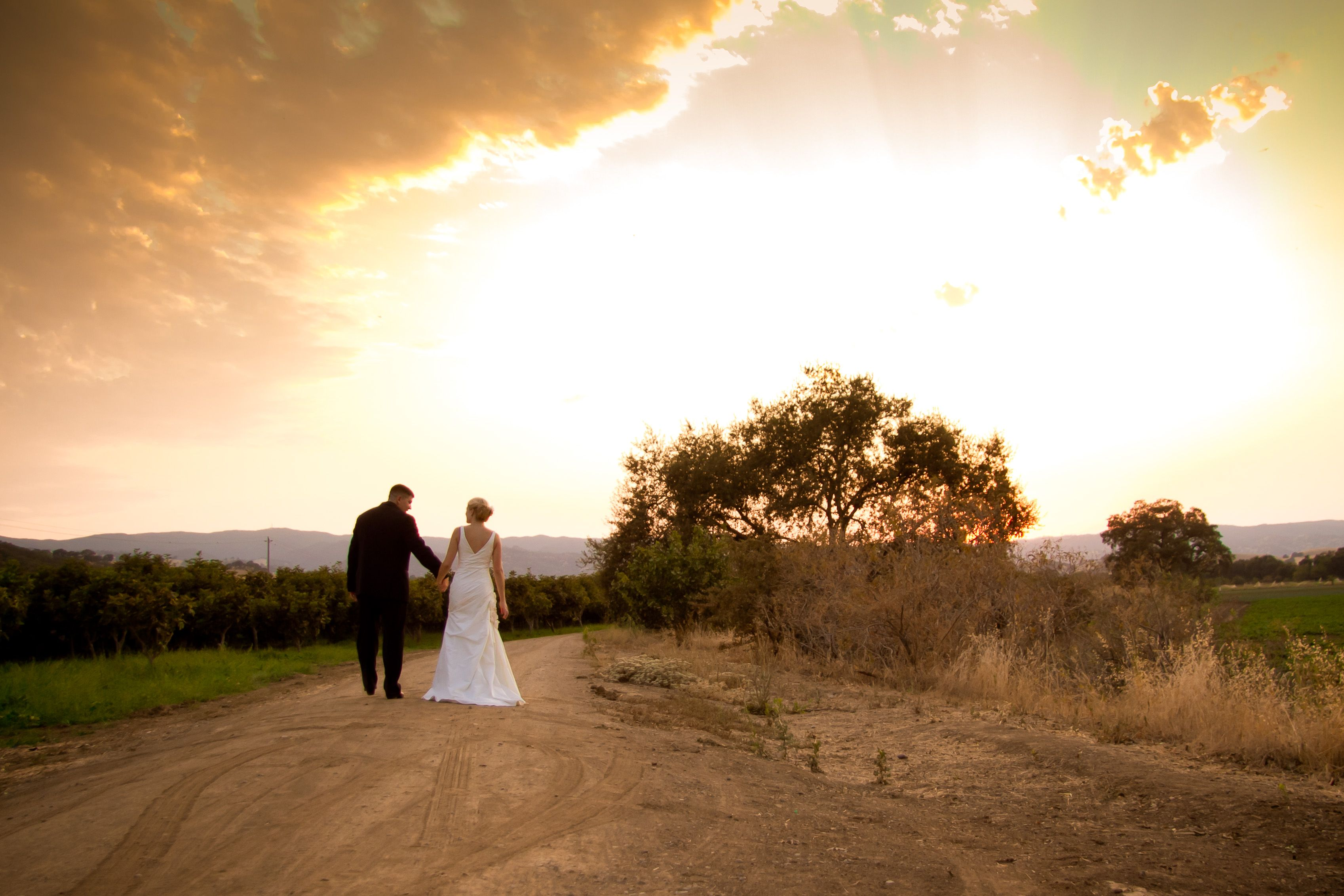 Get married on an organic farm in the beautiful Capay Valley. This 400 acre farm grows over 60 varieties of organic fruits and vegetables. Weddings are held along an oak-tree & lavender-lined, grassy plateau overlooking fields of fruits, vegetables, & orchards.