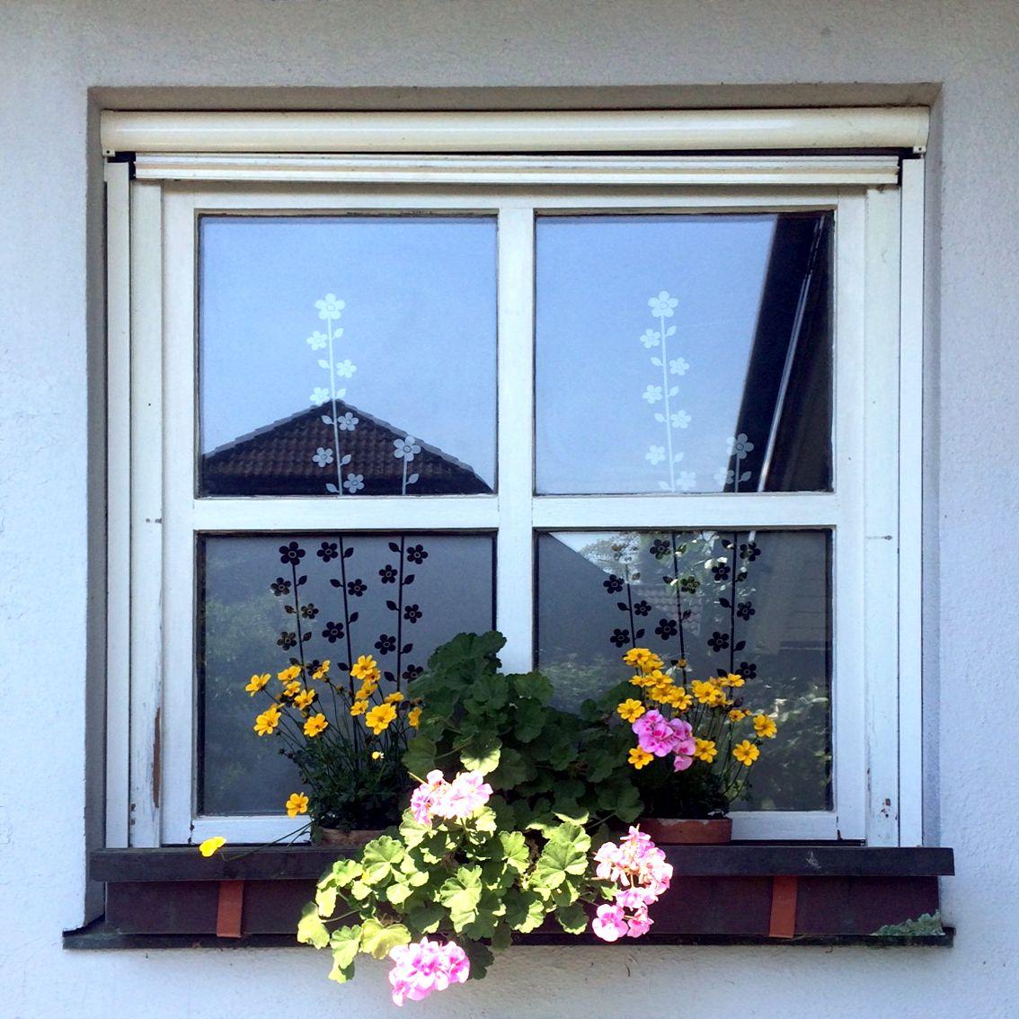 Sichtschutz und Dekoration für ein Küchenfenster mit einer