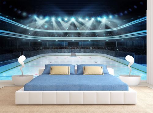 Details About Ice Hockey Arena Rink Wall Mural Photo