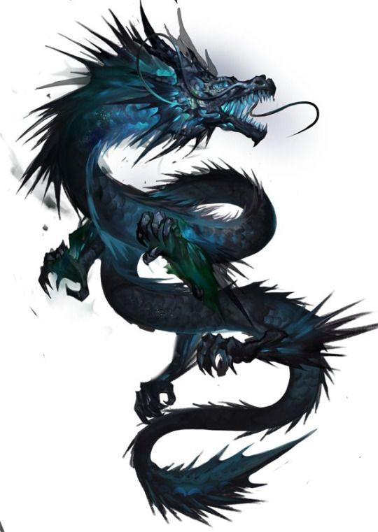 Fantasy Dimentions | My Dragons | Chinesischer drache ...
