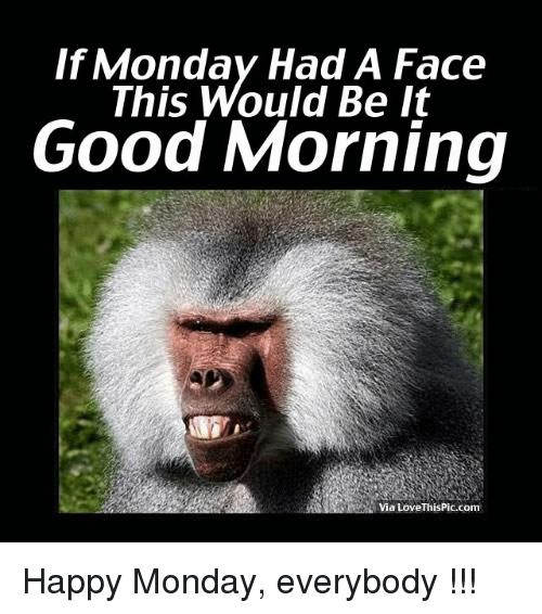 monday #weekdays #memes #humor #quotes #crumpy #dude #fun | Good morning  funny, Morning quotes funny, Funny good morning quotes