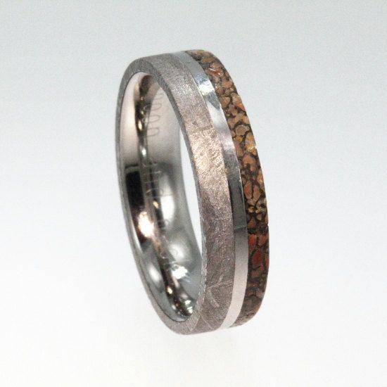 Meteorite Ring Dinosaur Bone Wedding Band Engravable Titanium Ring