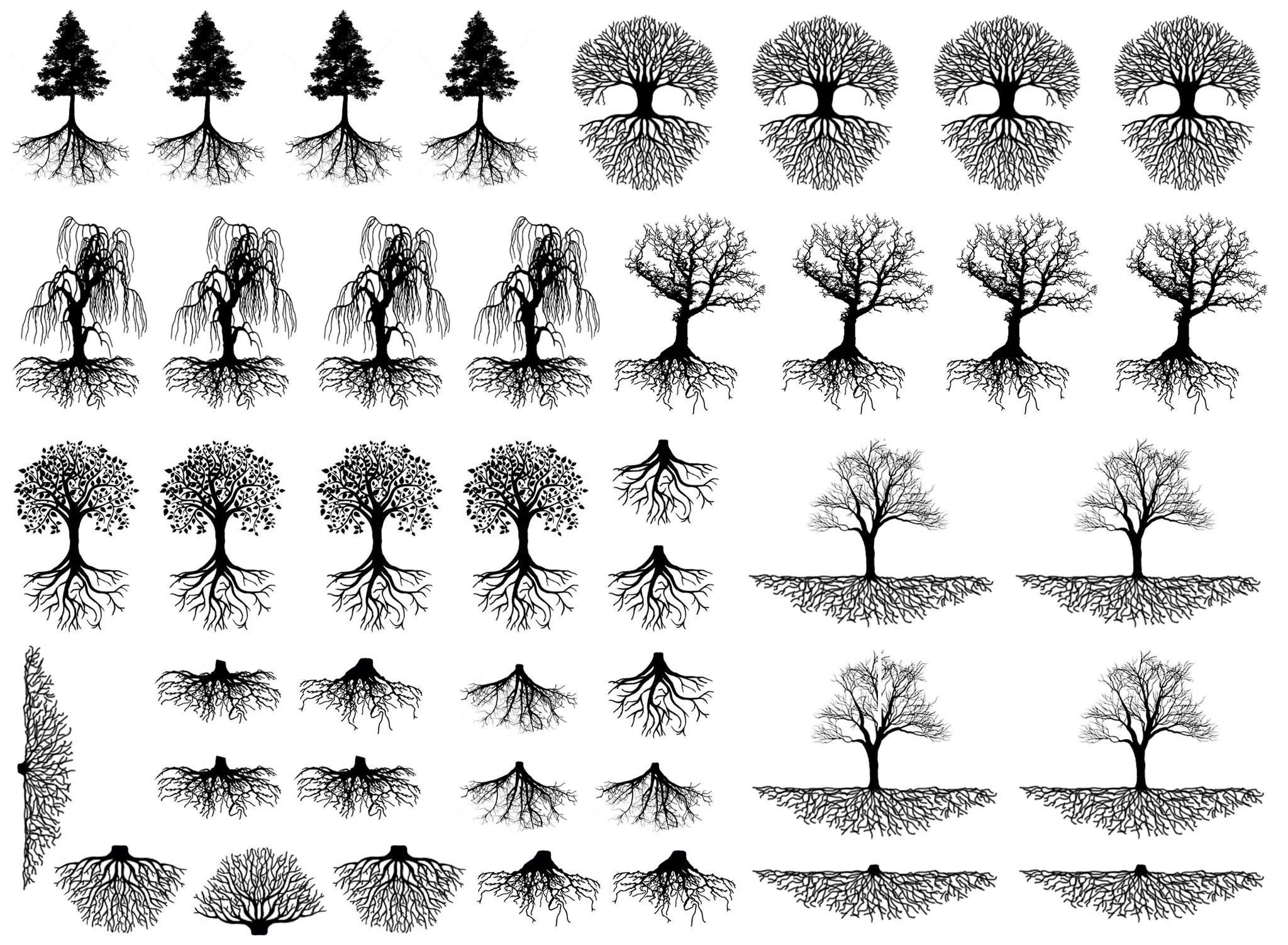 Trees Roots 3 8 To 1 1 4 Black 427 Or White 428 Fused Glass Decals Tree Roots Tattoo Oak Tree Tattoo Willow Tree Tattoos
