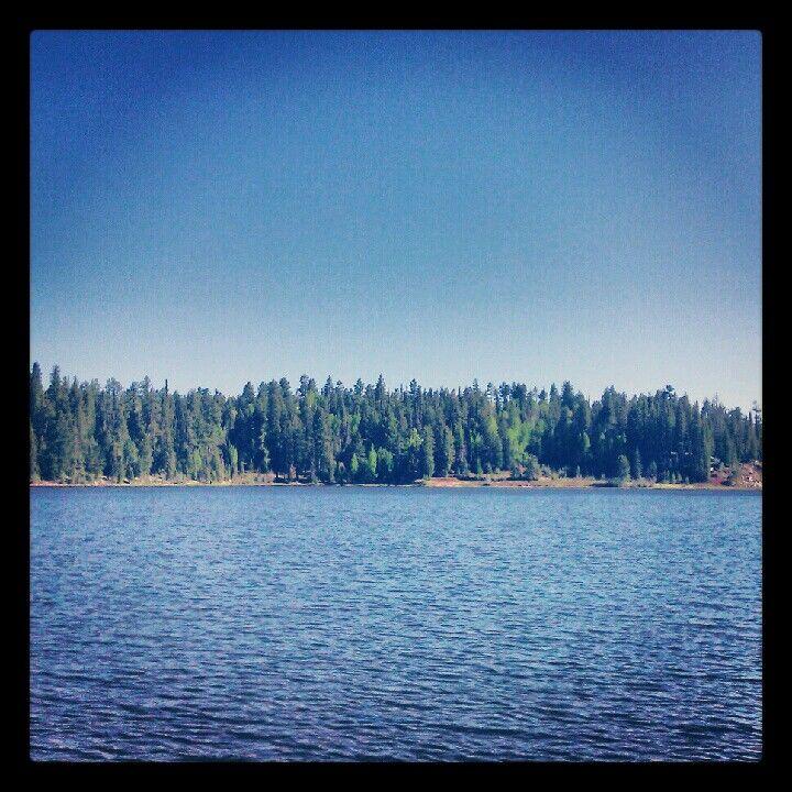 Pacheta Lake White Mountain Apache Reservation Az My Fav Spot To Hook A Trout Natural Landmarks Lake Favorite Places