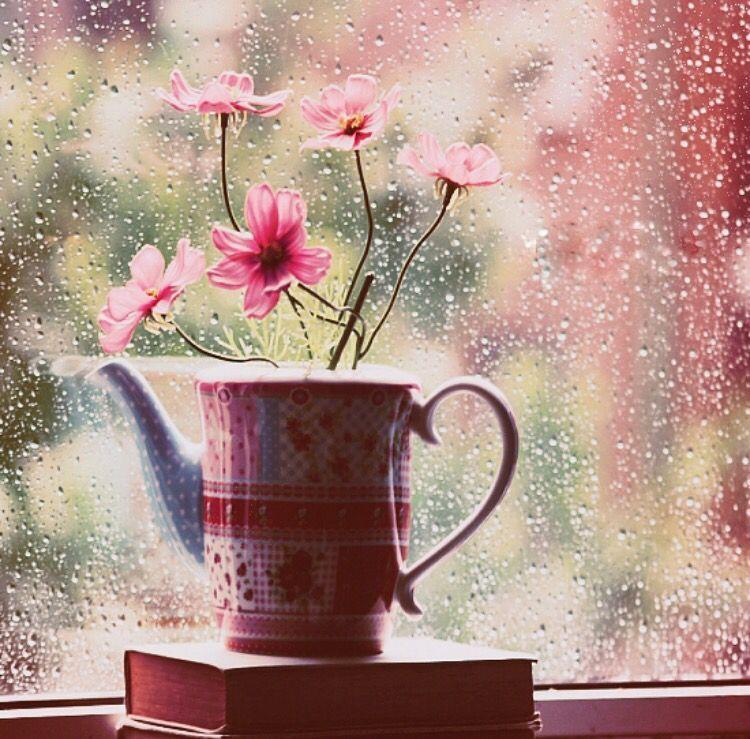 Пасмурные картинки с добрым утром