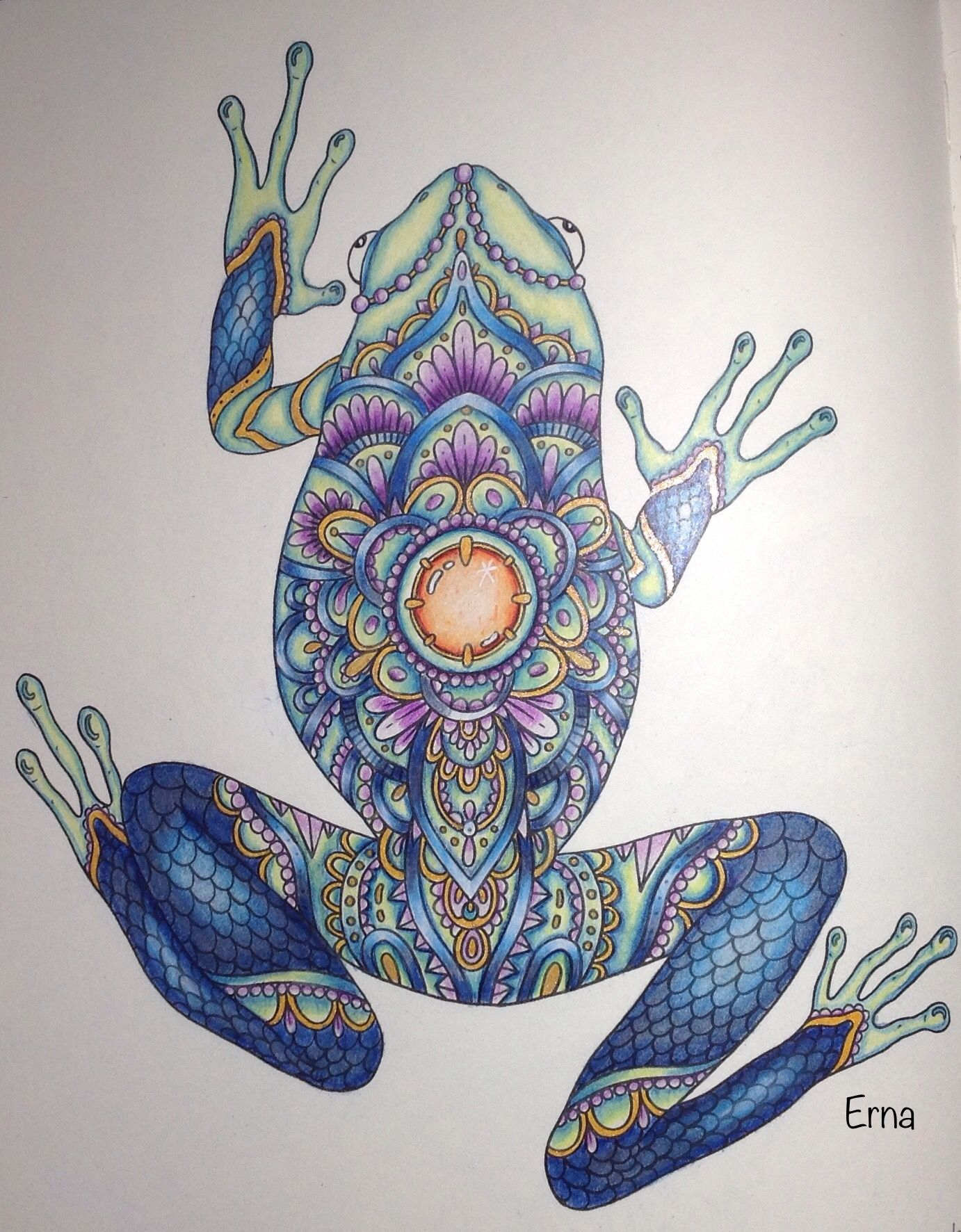Frog From Summer Nights Coloring Book