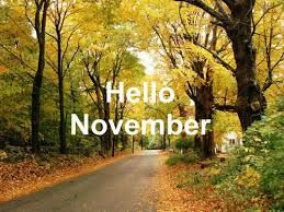 November month #hellonovembermonth November month #hellonovembermonth