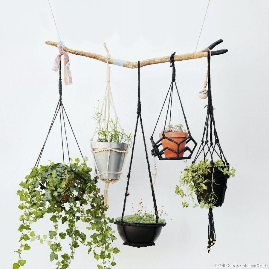 Suspension Pour Plantes D Intérieur comment diviser une chambre en deux sans faire de travaux